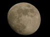 moon80-S_005