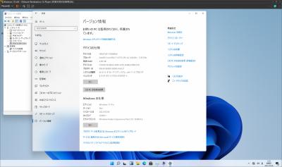 Windows11_005